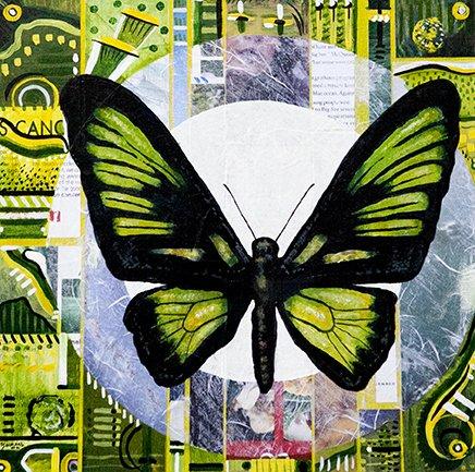 WEB-Electric-Butterfly-1.jpg